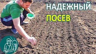 🍅 Посев гороха | Посев редиса