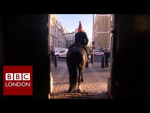 The Royal guards doing their duty on Christmas day – BBC London News