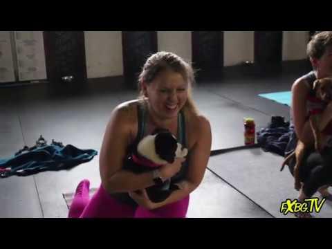 Puppy Yoga w SPCA of Fredericksburg