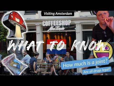 AMSTERDAM WEED SCENE 🇳🇱Top 10 Questions Answered! (Coffeeshops, Truffles & Drug Laws)