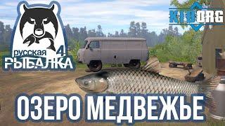 Русская рыбалка 4 ИЗУЧАЮ ОЗЕРО МЕДВЕЖЬЕ
