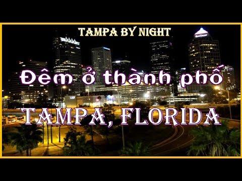 Vlog CUỘC SỐNG MỸ - Số 77 - Ngắm cảnh Downtown Tampa về đêm (Tampa by night)