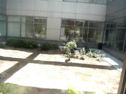 Optaros Office - Bucharest