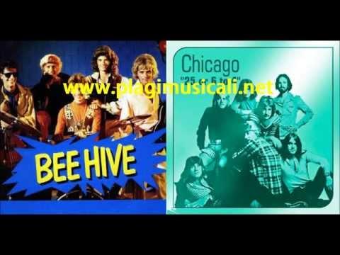 Bee Hive vs Chicago