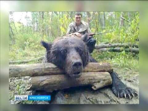 В Ермаковском районе нашествие медведей