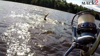 Clip Mack2 en Action de Pêche