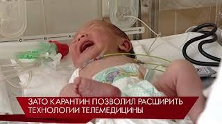 365 малышей, зачатых в пробирке, родилось в Свердловской области за 4 месяца 2020 года