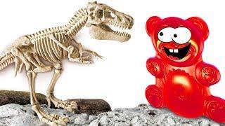 Lucky Bär hat einen Dinosaurier ausgegraben