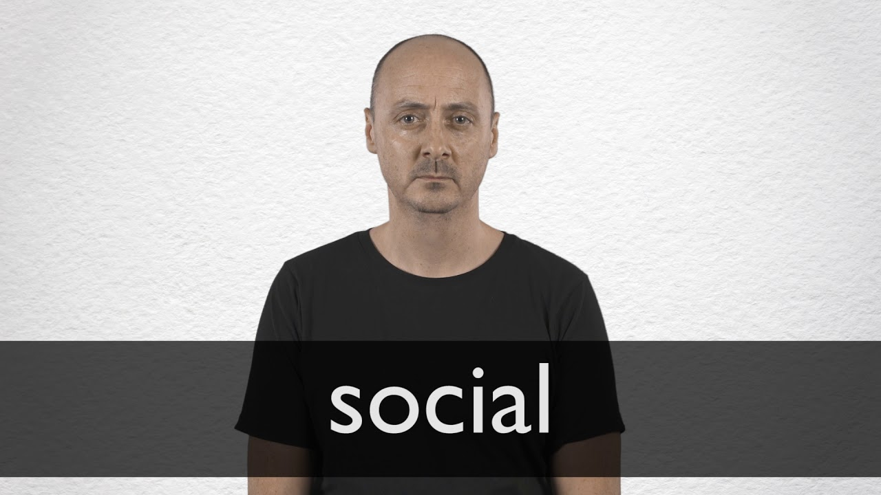 Social definition and meaning | Collins English Dictionary
