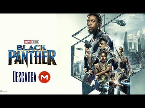 Descargar Avengers: Black Panther Quest Quinta Temporada ...