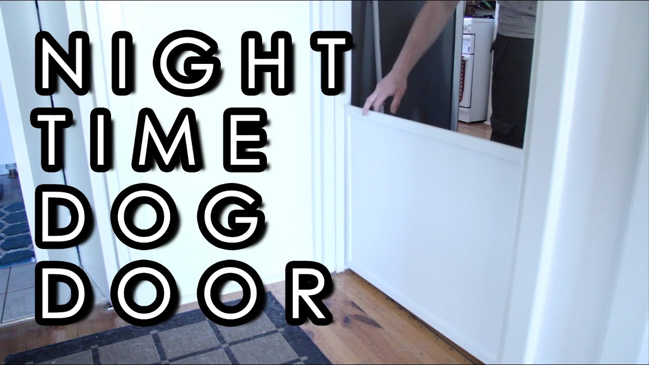 how to stop dog scratching door at night