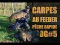 Carpe au feeder - pêche à la carpe rapide en rivière - VLOG#5