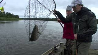 FISCH & FANG Januar-Ausgabe 2013: Land der Lachse