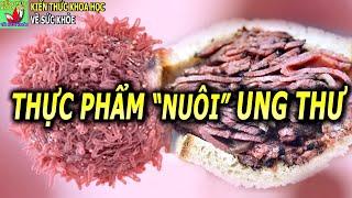 Những loại thực phẩm tế bào ung thư chỉ muốn bạn ăn nhiều hơn