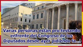 Varias personas están pro.testando enfrente del Congreso de los Diputados desde ayer pidiendo la...