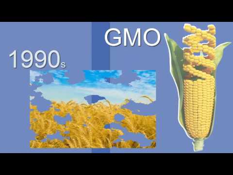 What is GMO and how it changed the world || HINDI ||