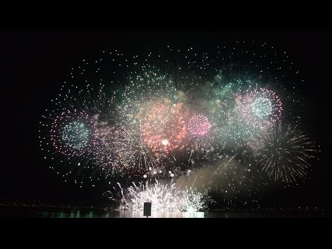 Winner of 2014 Honda Celebration of Light Fireworks Festival (Team Japan: August 02)