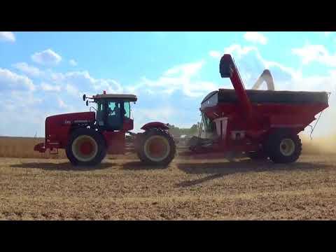 2017 Soybean harvest near Urbana Illinois