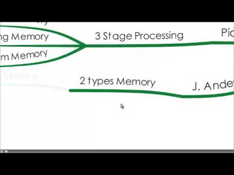 A Brief Overview of 4 Learning Theories