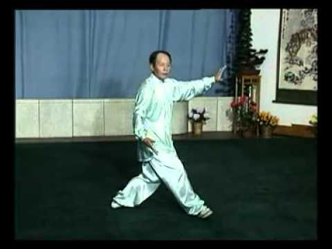 42式太極剣 02 | FunnyCat.TV