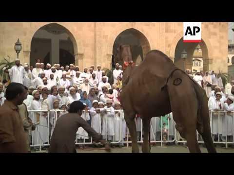 Mass prayers and celebrations kick off  Muslim holiday of Eid