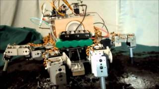 Robotic Farmer: Prospero, a single member of a robotic swarm
