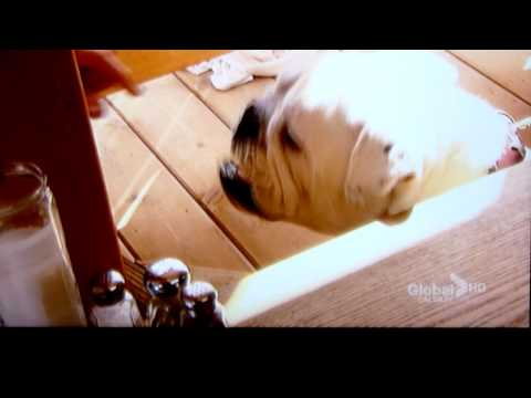 Calgary free HDTV over-the-air OTA update video 2010!  HD DIY