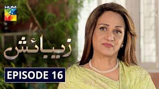 Zebaish Episode 16 HUM TV Drama 25 September 2020