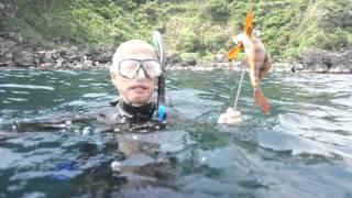 伊豆大島 スピア・フィッシング 魚突き.