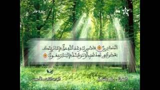 Recitation Of The Sheikh Rachid Belasheyyah تلاوة مميزة للمقرئ رشيد بلعشية الحزب 48
