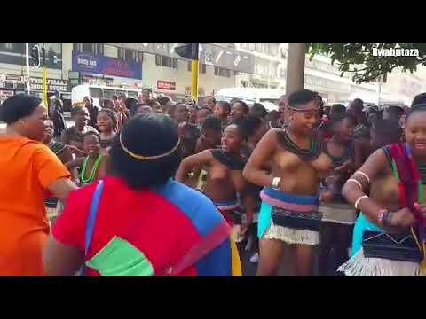 Zulu Dance 💃