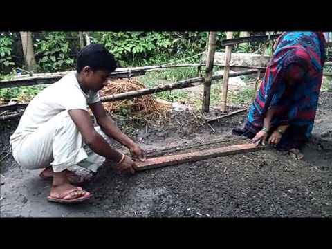 Brinjal Nursery Bed preparation