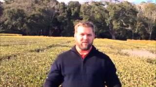 Project Mud Charleston Tea Plantation April 27, 2013