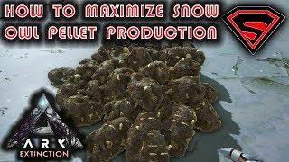ARK EXTINCTION SNOW OWL PELLET FARM - HOW TO MAXIMIZE YOUR SNOW OWL PELLET PRODUCTION