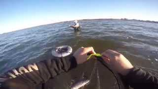 Speckled Trout Fishing (Galveston Bay) (2014)