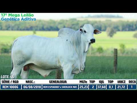 LOTE 46 - REM 10006 - 17º Mega Leilão Genética Aditiva 2020