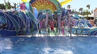 Special Last Day Blue Horizons at SeaWorld San Diego 8-12-15