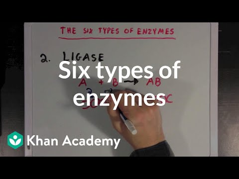 Six types of enzymes | Chemical Processes | MCAT | Khan Academy