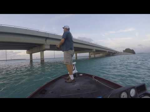 Tarpon Fever, chasing the silver king