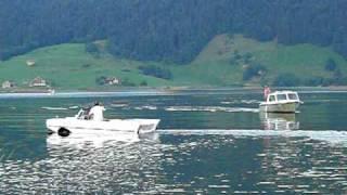 Auto fährt in See