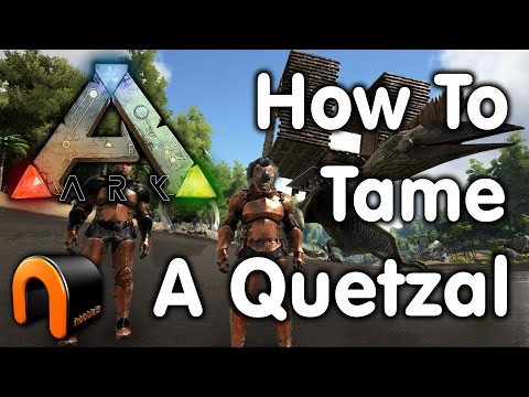 ARK: HOW TO TAME A QUETZAL