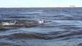 В честь Дня ріки Лєни якутяне здійснили заплив на 5 км