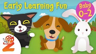 Early Learning Fun #6 | Pet Animals 🐶🐰🐹 Counting & Colors | Educational