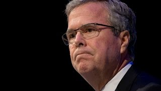 Why Jeb Bush Is Bad for the GOP | Zo Nation