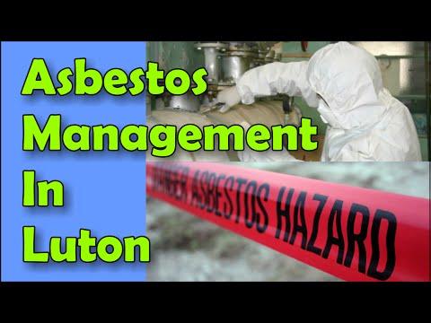 asbestos-management-company-luton