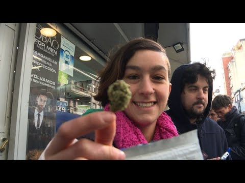 Uruguay pharmacies start selling pot