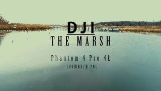 The Marsh 4K - DJI Phantom 4 Pro Footage(100mbs/h.265)