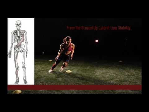 Foot to Core Sequencing | The Foundation to Human Locomotion with Dr Emily Splichal