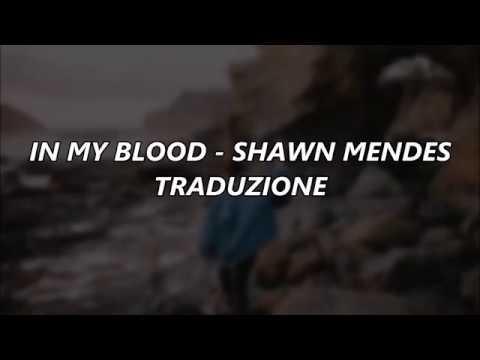 In my blood - Shawn Mendes traduzione