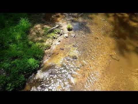 South Carolina Gold Exploration